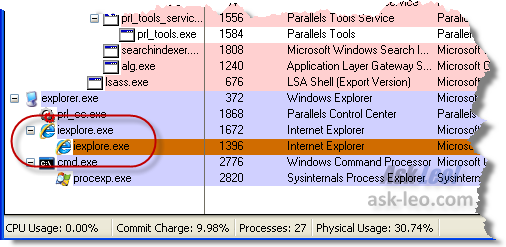 IE8 Twice in Process Explorer