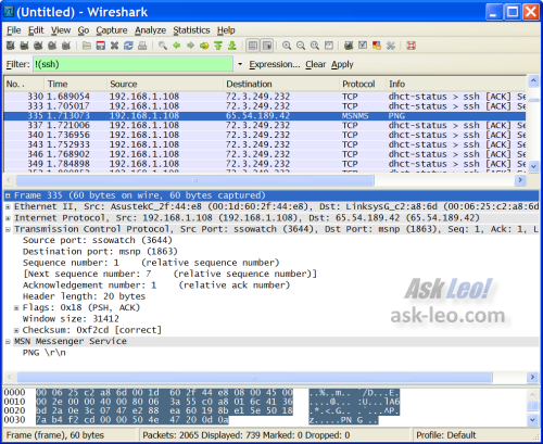 WireShark display window