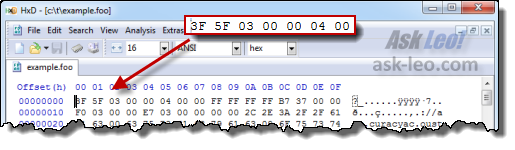 HxD Hex Editor open on our example file, example.foo