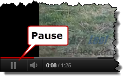 Video Player Pause Button