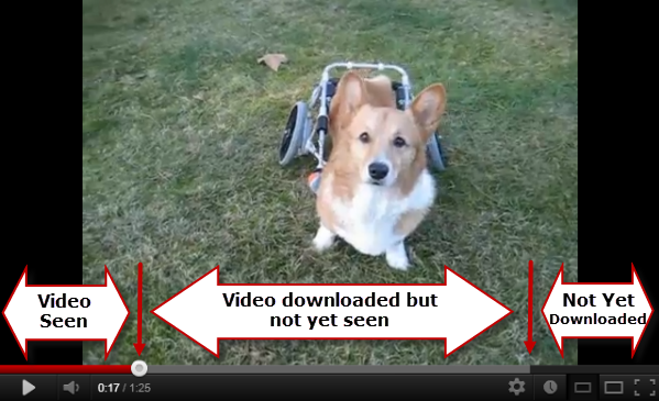 Video Player Progress Bar