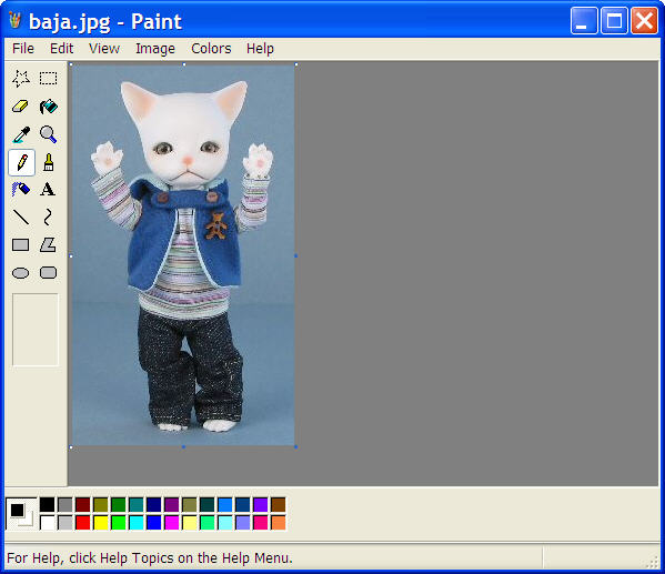 Example image in the Paint program