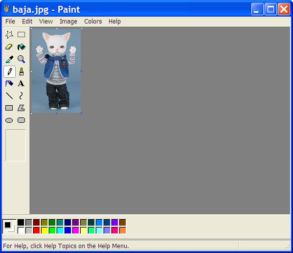 Example image resized smaller in the Paint program