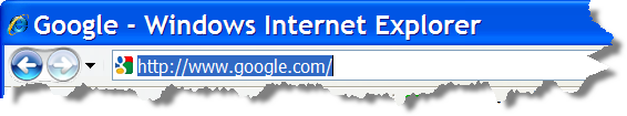 IE's Title Bar when visiting Google.com