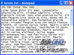Notepad Window