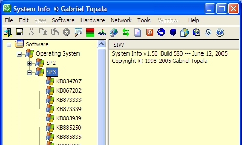 System Information for Windows Example
